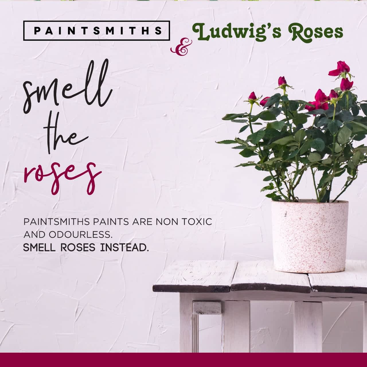 The Language of Colour. Ludwig's Roses 48th Spring Rose Festival